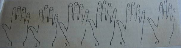 body, character, finger, hand, human, palm