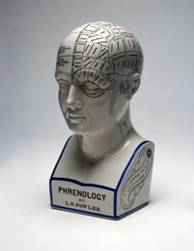 Phrenology or what your scull tells about you?