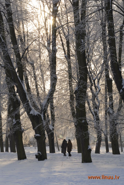 photo, Riga, winter