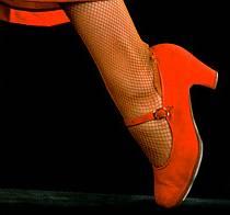 Flamenco camp in Zvejniekciems