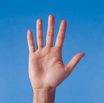 What human hand tells?